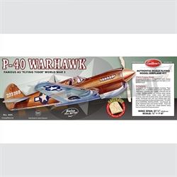 "P-40 Warhawk. - 28"" span"