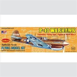 "P-40 Warhawk - 16½"" span"